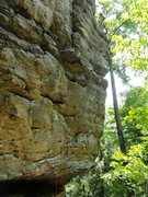 Rock Climbing Photo: Count Floyd Show, climber can be seen at the ancho...