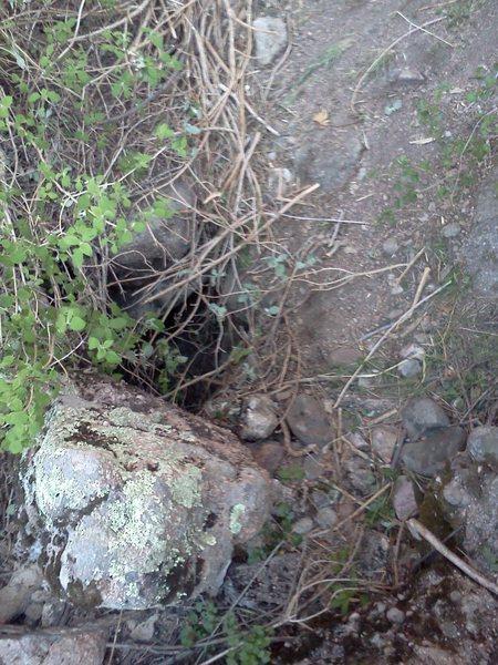 Rock Climbing Photo: The trap