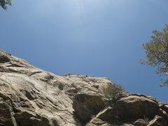 Rock Climbing Photo: FA on a 2 pitch in Newlin Creek, CO.  Carson photo