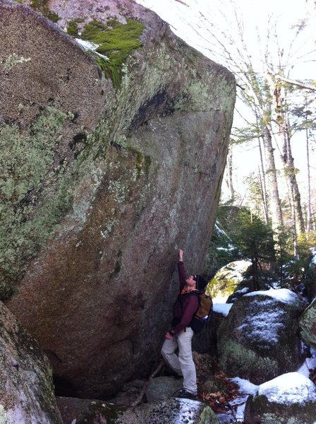 Rock Climbing Photo: F yeah