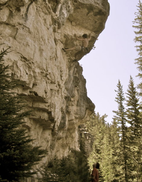 Rock Climbing Photo: moss toss i think