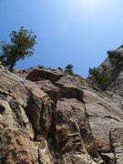 Rock Climbing Photo: Blocky terrain.