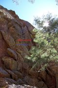 Rock Climbing Photo: Next two routes to the right of Form 34.