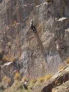 Rock Climbing Photo: Steve leading the bolt ladder.