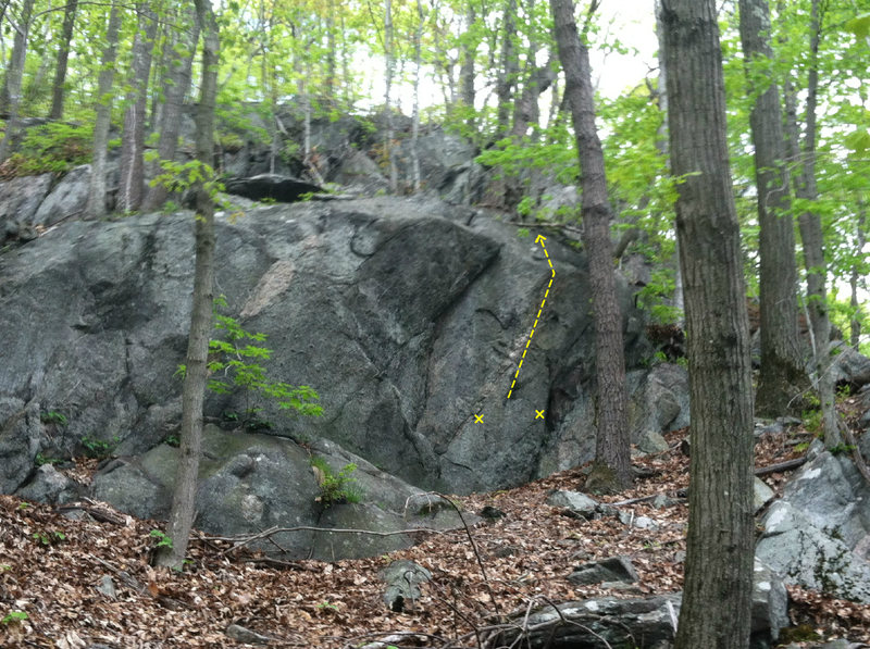 Rock Climbing Photo: Oranges