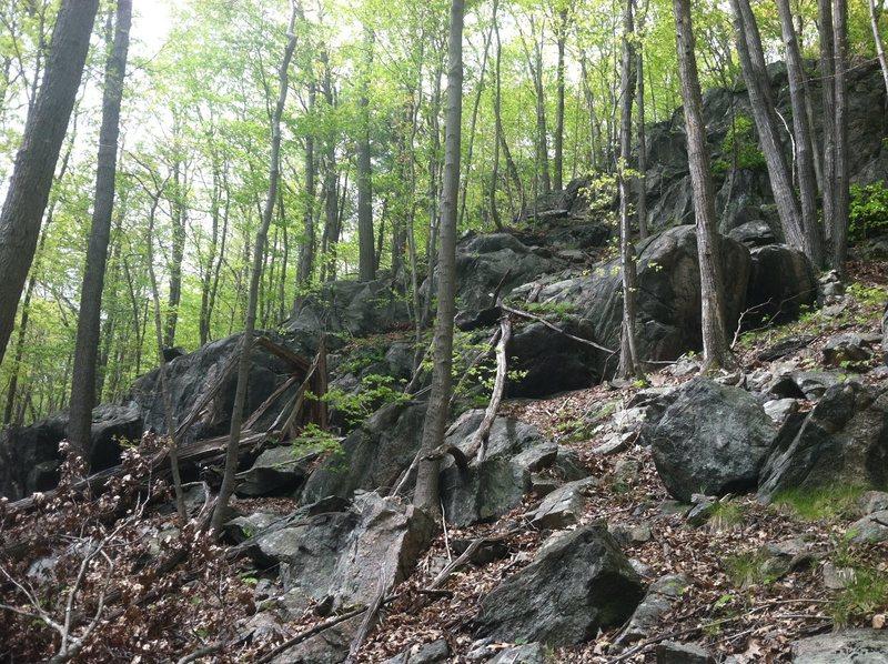 Rock Climbing Photo: The Little Guys Area