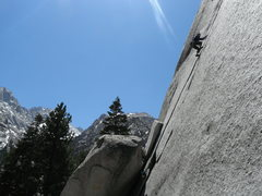 Rock Climbing Photo: Rob Beno on Tanager AKA 5.11 Crack