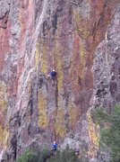 Rock Climbing Photo: Mike going for the onsight on the Proposal.