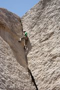 Rock Climbing Photo: Reed Ames on Getting Smaller, .10b in Grapevine ar...