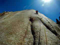 Rock Climbing Photo: Anti-crack.