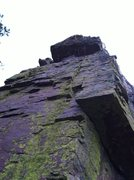 Rock Climbing Photo: View of La Vida Loca from the base.