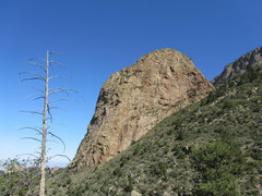 Rock Climbing Photo: The Prow - from the southeast - the Shield is behi...