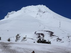 Rock Climbing Photo: Mount Hood from Timberline Lodge area