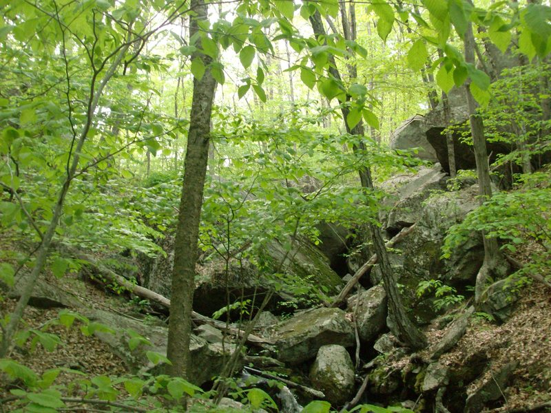 Rock Climbing Photo: A new area I found today.  A couple hard looking l...