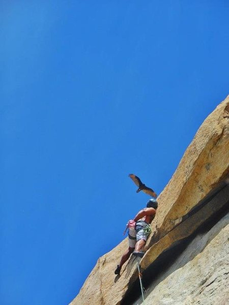 Rock Climbing Photo: Pulled the roof! last quickdraw is on my left hip ...