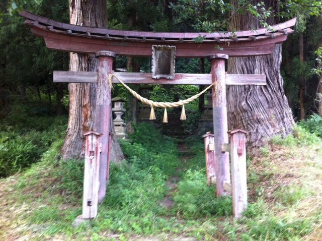This torii gate marks the entrance to the forest, leading you to the boulders.