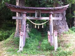 Rock Climbing Photo: This torii gate marks the entrance to the forest, ...