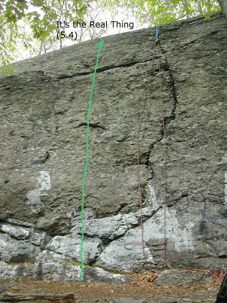 "The green line indicates the approximate location of ""It's the Real Thing"". Note the blocky start, the undercling at about the midpoint, and the horizontal crack up top. The rope is actually set up on ""The Bone"", the crack to the right."