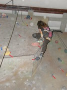 Rock Climbing Photo: climbing comp