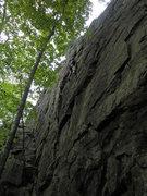 Rock Climbing Photo: Mike Gray top roping Crackatoa.