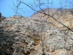 Rock Climbing Photo: Levi on Morning Moos
