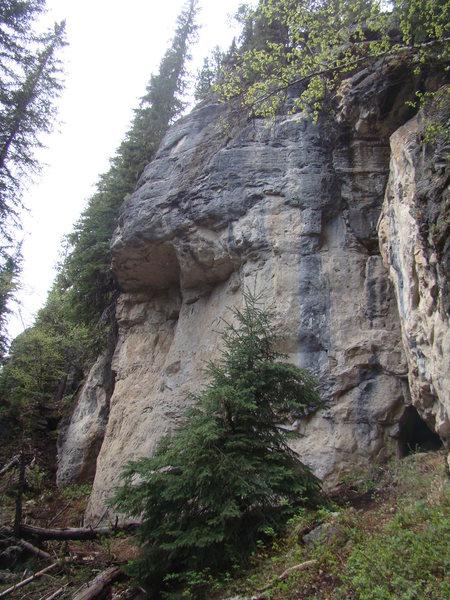 Rock Climbing Photo: The Hangover Wall. The Danks.  Spearfish Canyon, S...