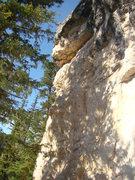 Rock Climbing Photo: Nightmare on Addie Street, 5.11c/d.  Seepy Creepy ...