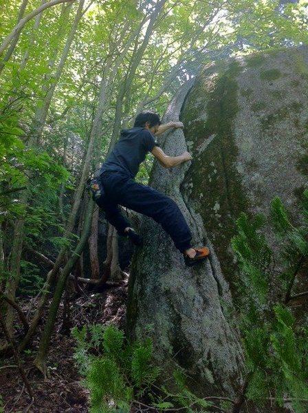 Rock Climbing Photo: Taiko Crack