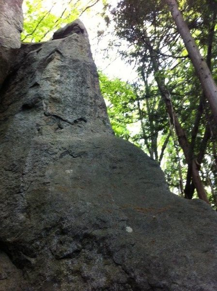 Rock Climbing Photo: Climb the right side arete