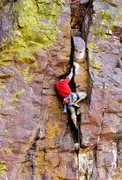Rock Climbing Photo: Tim H spitting out lichen...