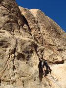 Rock Climbing Photo: rock-a-lot