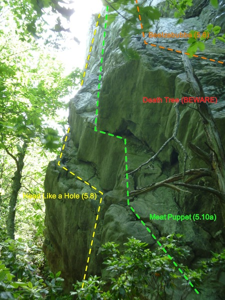 Rock Climbing Photo: View of the Meat Puppet area when it first comes i...