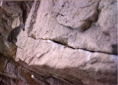 Rock Climbing Photo: The Molson's Madness bolts in March 1989. The bela...