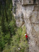 Rock Climbing Photo: Awesome pumpy route.