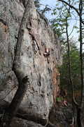 Rock Climbing Photo: Rawlhide Wall  Johanna Nevins leads Rawlhide (5.10...