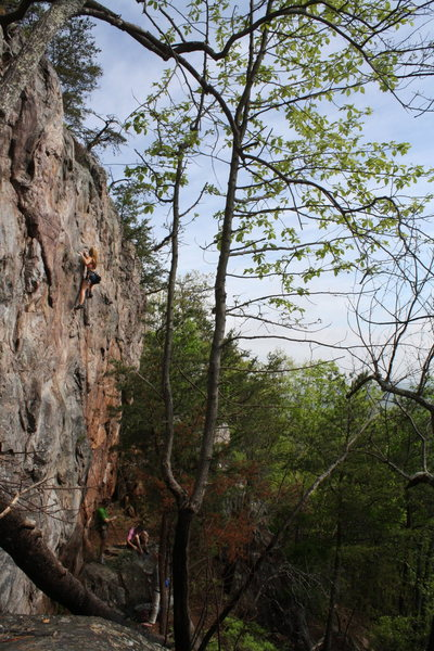 Rawlhide Wall<br> <br> Johanna Nevins leads<br> Rawlhide (5.10) sport<br> <br> Crowders Mountain State Park, North Carolina