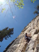 Rock Climbing Photo: Jake figures out a sequence to get him out of the ...