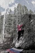 Rock Climbing Photo: Dasha Zamolodchikov enjoying an afternoon stroll o...