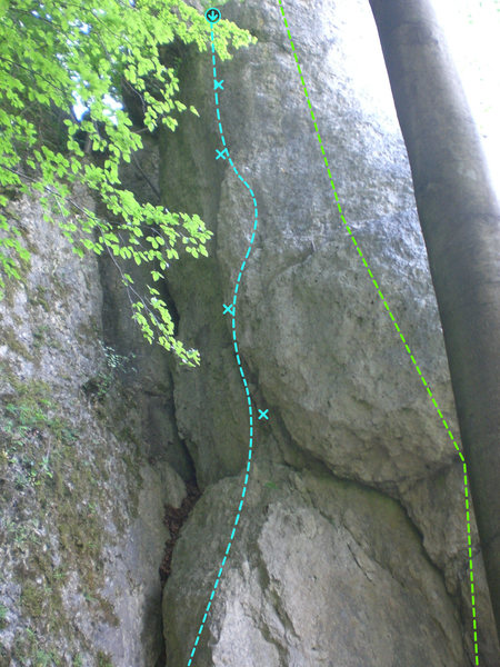 HZ on the left, Kleiner Fuchs on the right in green.