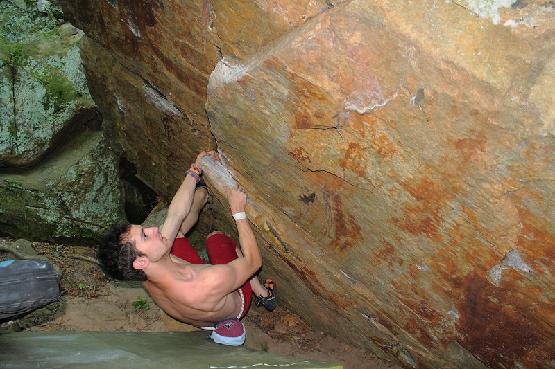 Ryan Hussey, fighting the dab on Ticks (v3)