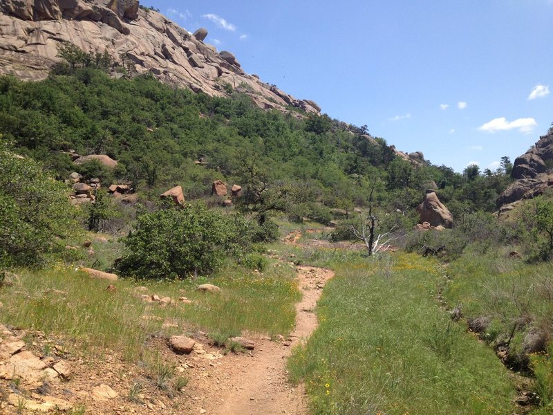 View of the first clearing on the trail. Guardian Boulder is the big boulder on the right.