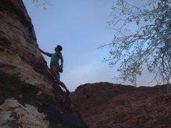 Rock Climbing Photo: Cannibal Crag