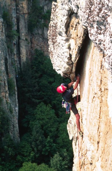 Readying the juggy crux roof pull on Dufty's Pop Off.  Seneca Rocks, WV