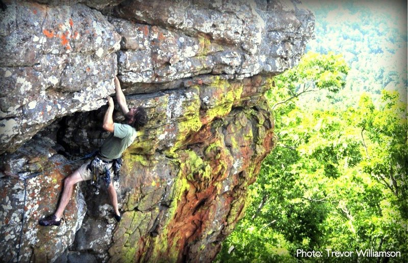 Rock Climbing Photo: The final moves on Windy Armbuster (5.10d).  Photo...