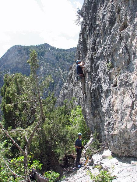 Rock Climbing Photo: John Ross climbing the choss.