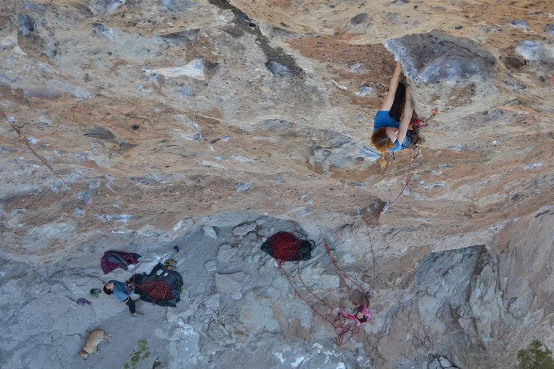 Rock Climbing Photo: Meghan on  Rumplestiltskin