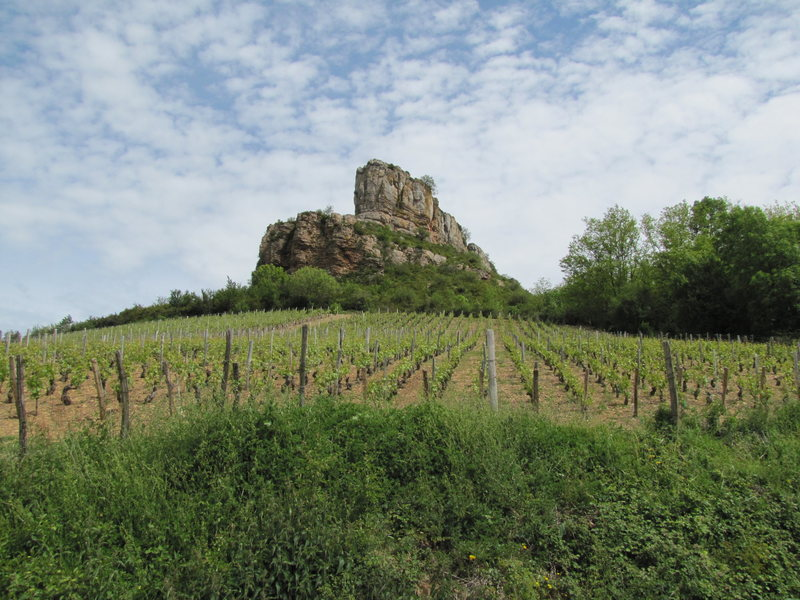 Another view of the prow above the vineyards.