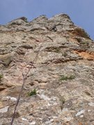 Rock Climbing Photo: Follow her!