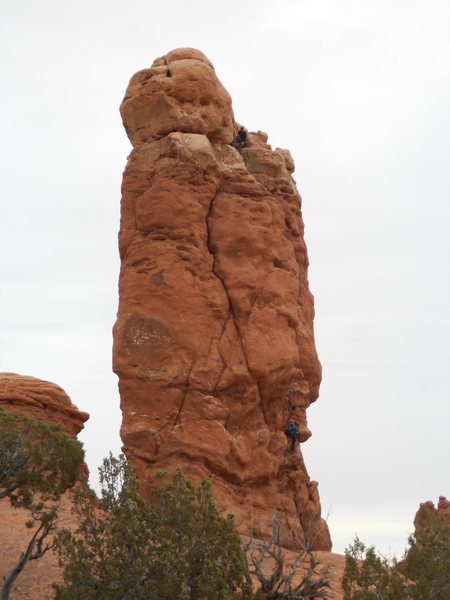 Rock Climbing Photo: Owl Rock.  Arches