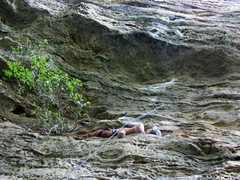 Rock Climbing Photo: The way rests should be!!!!!